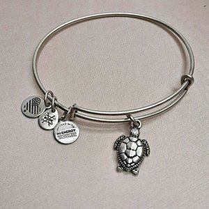 Alex and Ani Charity By Design Turtle Rafaelian